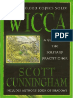 Guide for solitary practitioner.pdf