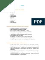 espanhol_resumoglobal.pdf