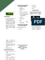 79515314-Triptico-Tabaquismo