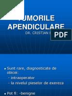 02 Curs Tumori Apendiculare - Dr. Badiu