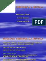 07 Patologia rectului