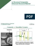 Ceramic Structural Composites