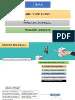 Analisis Riesgo-Escenarios y Sensibilidad Grupo B291