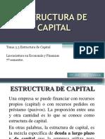 3.3a Estructura Capital