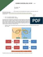 Examen Funcional Del VIII Par Tipeo 4