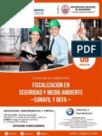 AUDITORÍA FISCALIZACIÓN AMBIENTAL ERP.pdf