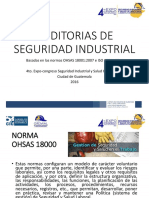 Auditorias de Seguridad Industrial.