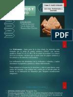 Wolframatos y Arseniatos Mineralogia Final