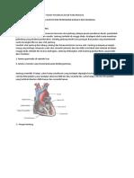 Anatomi Fisiologi Jantung Dan Sistem Peredaran Darah Pada Manusia