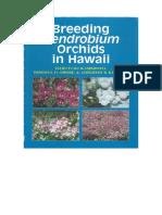 Breeding Dendrobium in Hawaii