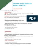 SUBIECTE EXAMEN PRACTIC MICROBIOLOGIE SEMESTRUL II.docx