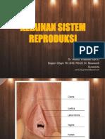 Kel. Sistem Reproduksi