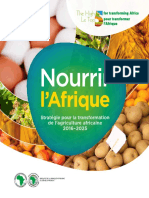 Feed Africa - Strategie-Fr