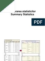 Generarea Statisticilor Summary Statistics
