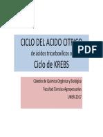 ciclo-Del-Acido-citrico [Modo de Compatibilidad]