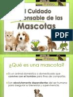 El Cuidado Responsable de Las Mascotas