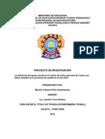 PROYECTO-DE-INVESTIGACION.docx