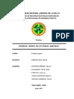 INFORME.-POTENCIAL-HIDRICO-DE-LA-BETARRAGA-ELIFAZ.pdf