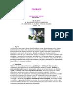 anexo 3 - florais de minas e saint germain.pdf
