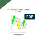 calculo_I.pdf