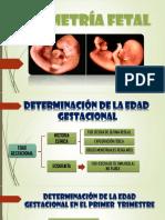 Biometría Fetal