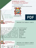 EXPOSICIÓN HABEAS CORPUS.pdf