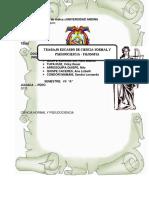 154199455 Universidad Andina 2