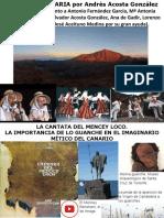 La Mc3basica Canaria3b