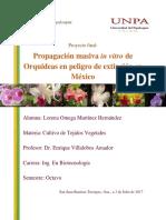 Escalamiento de propagación masiva de Orquídeas (Proyecto final)