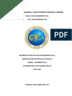 Informe de Practicas Preprofesionales Municipalidad