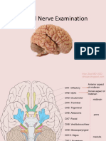cranialnerveexamination-111106073102-phpapp02