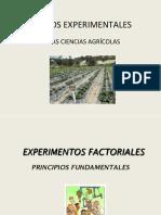 DISEÑOS-EXPERIMENTALES.-DCA-y-BCA1