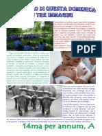 Vangelo in immagini - 14ma per annum A.pdf