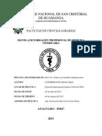 Informe de Camelidos Sudamericanoss Inia
