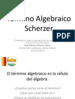 11 Termino Algebraico (1).ppsx