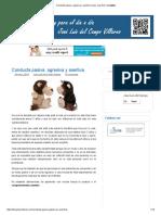 Conducta Pasiva, Agresiva y Asertiva _ Jose Luis Del Campo Villares