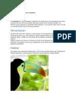 Practica 06 Ecologia Aves