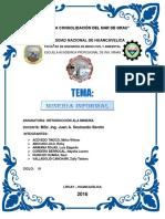 MINERIA-INFORMAL (1).docx