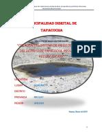 pip represa huañac 2015