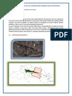 cca-kari-sandra (1).docx