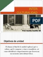 Tema 4 Com Intercultural 14