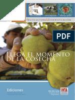inta_revista-fd_61