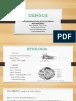 Dengue expo