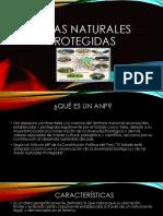 Áreas Naturales protegidas.pptx