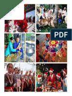 Festivals Pictures