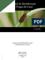 manual identificação pragas da cana.pdf
