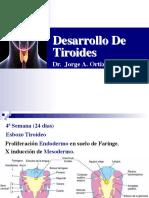 8 Embrio Tiroides Jaoc