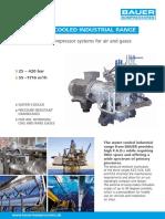 BAUER Industry Watercooled Air Gas En