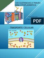 Intercambio-de-sustancias-a-través-de-la-membrana-may-lore completo.pptx