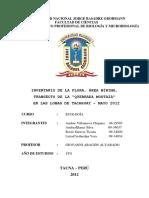 Trabajo de Investigacion Quebrada Mostaza Tacahuay Mayo 2012